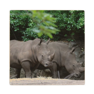 Pair of Rhinos Wood Coaster