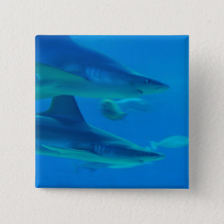 Pair of Sharks  Button