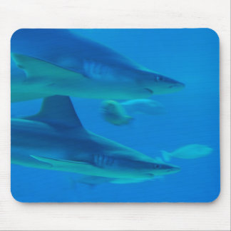 Pair of Sharks Mouse Pads
