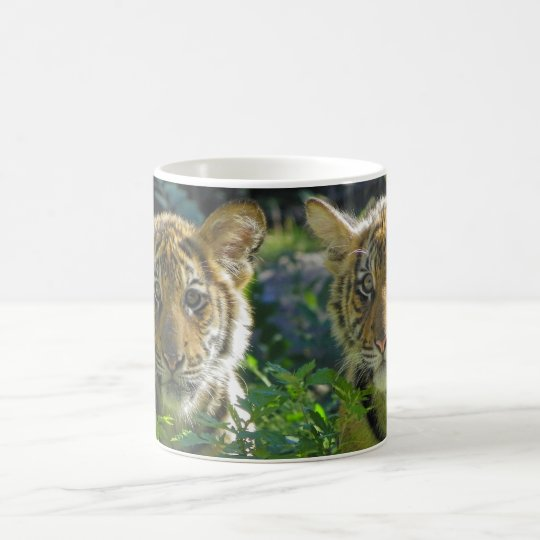Pair of Tiger Cubs Portrait Coffee Mug