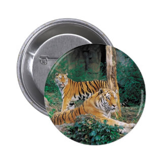 Pair of Tigers 2 Inch Round Button