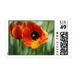 Pair of Tulips Stamp