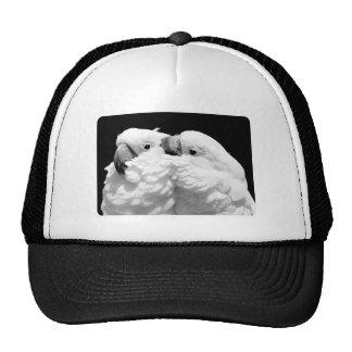 Pair of umbrella cockatoos trucker hat