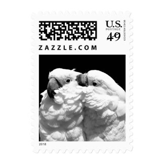 Pair of umbrella cockatoos postage
