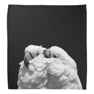Pair of umbrella cockatoos bandana