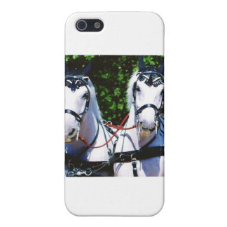 Pair of White Percherons iPhone SE/5/5s Cover