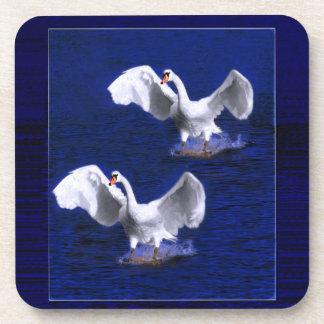 pair of white swans landing coaster
