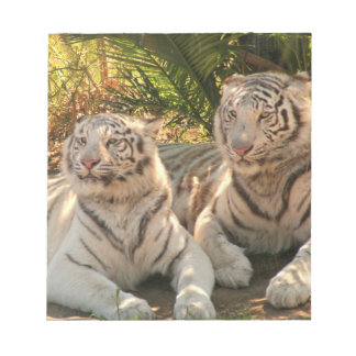Pair of White Tigers Notepad