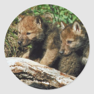 Pair of Wolf Cubs Classic Round Sticker