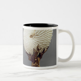 Pair of Worcester vases shaped as Nautilus Two-Tone Coffee Mug