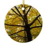 Pair of Yellow Maple Trees Autumn Nature Ceramic Ornament