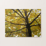 Pair of Yellow Maple Trees Autumn Nature Jigsaw Puzzle