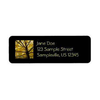 Pair of Yellow Maple Trees Autumn Nature Label