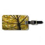Pair of Yellow Maple Trees Autumn Nature Luggage Tag