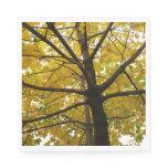 Pair of Yellow Maple Trees Napkin