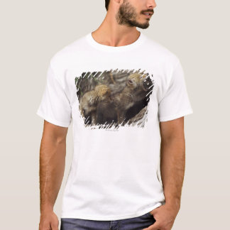Pair Of Young Coyote Pups Howling T-Shirt