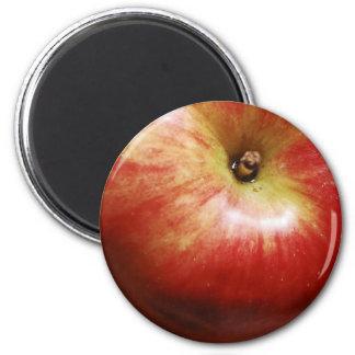País Apple Iman De Frigorífico