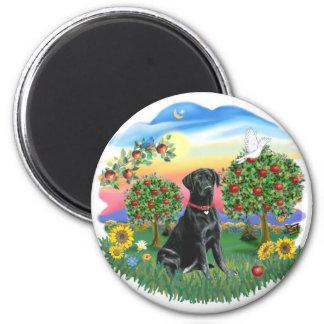 País brillante - Labrador negro Imán Redondo 5 Cm