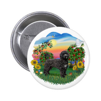 País brillante - Portie negro 5bw Pins