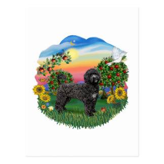 País brillante - Portie negro 5bw Tarjetas Postales