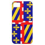 País de Francia de la bandera de la región frances iPhone 5 Case-Mate Cárcasas
