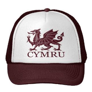 País de Gales CYMRU Gorro De Camionero