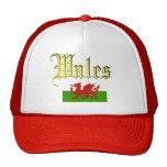 País de Gales (Cymru) Gorras De Camionero