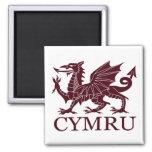 País de Gales CYMRU Imán Cuadrado