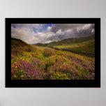 País de Gales del norte, cerca de Cregannan Poster