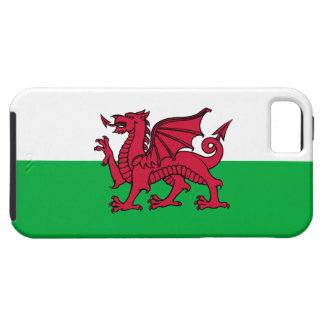 País de Gales - dragón de la bandera Galés iPhone 5 Coberturas