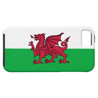 País de Gales - dragón de la bandera Galés iPhone 5 Fundas