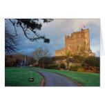 País de Gales - un castillo privado galés cerca de Felicitación