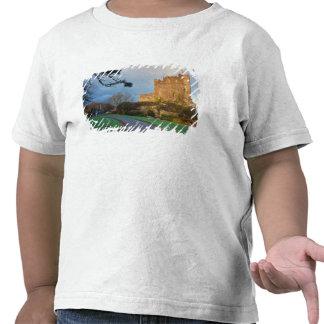 País de Gales - un castillo privado galés cerca Camisetas