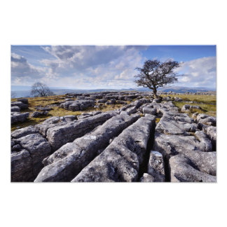 País de la piedra caliza - impresión de Ribblesdal Arte Fotográfico