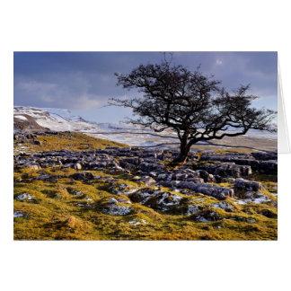 País de la piedra caliza - los valles de Yorkshire Felicitación