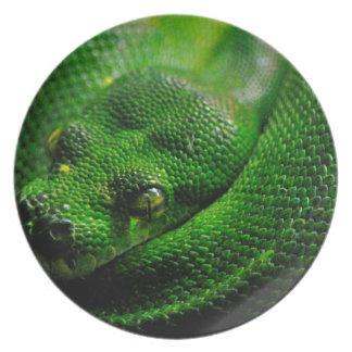 País de la serpiente plato para fiesta