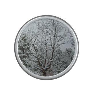 País de las maravillas del invierno altavoz