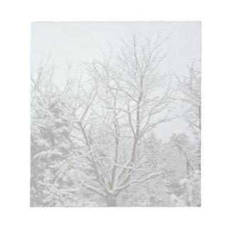 País de las maravillas del invierno blocs