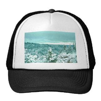 País de las maravillas del invierno del bosque de  gorras