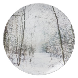 País de las maravillas del invierno del bosque platos