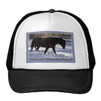País de las maravillas del invierno del caballo de gorro de camionero