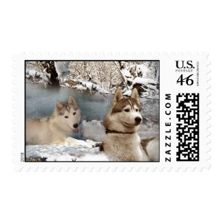 País de las maravillas del invierno del husky sibe sello