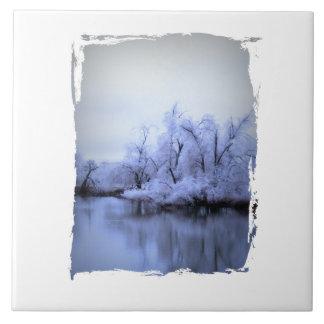 País de las maravillas del invierno del sauce azulejo