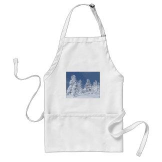País de las maravillas del invierno delantal