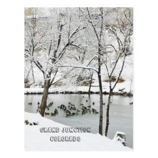 País de las maravillas del invierno en el parque d tarjetas postales