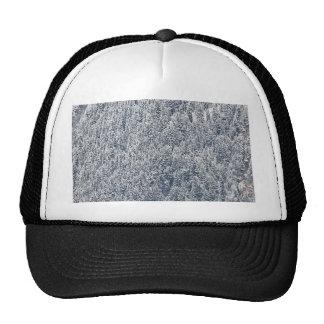 País de las maravillas del invierno gorra
