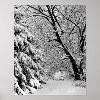 País de las maravillas del invierno impresiones