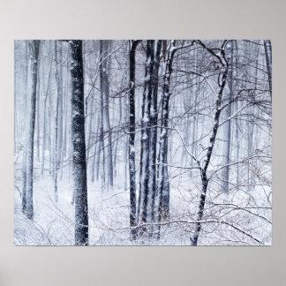 País de las maravillas del invierno posters