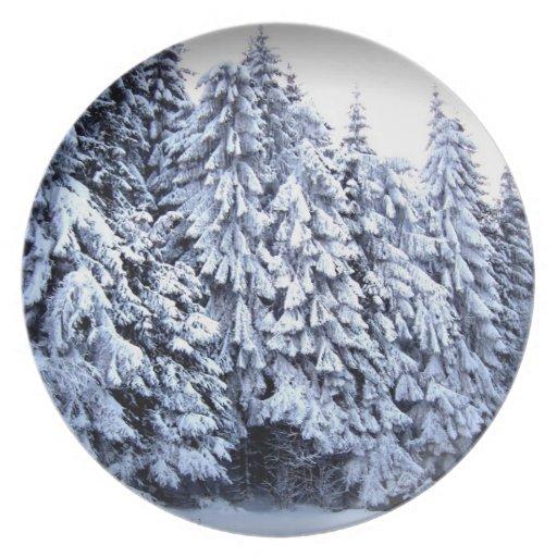 País de las maravillas del invierno plato