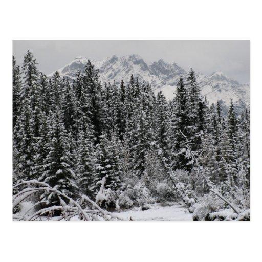 País de las maravillas del invierno postal